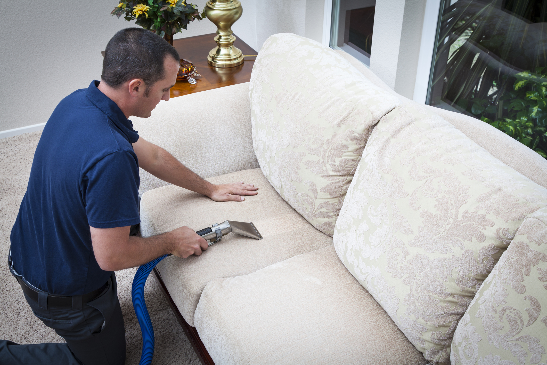 Image result for Sofa Cleaning